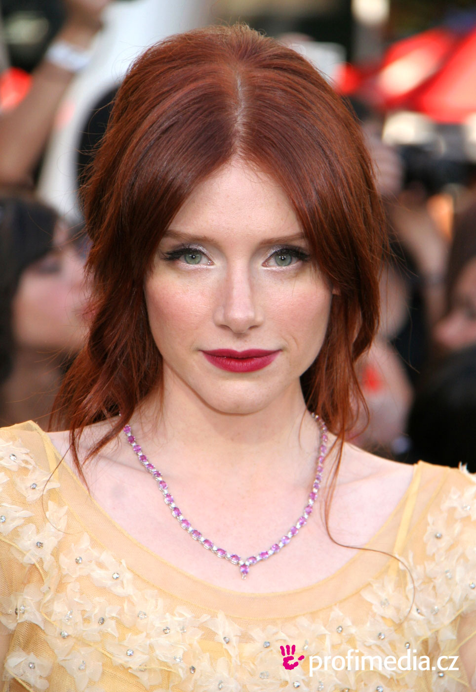 Bryce Dallas Howard - Picture