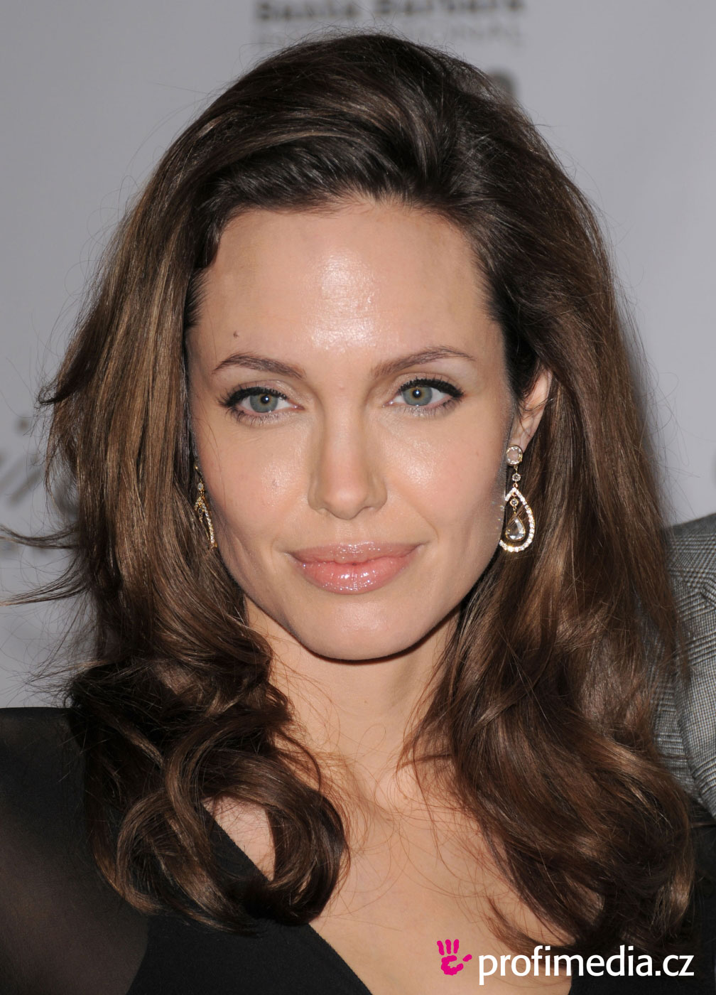 Angelina Jolie Hairstyles, Long Hairstyle 2011, Hairstyle 2011, New Long Hairstyle 2011, Celebrity Long Hairstyles 2029