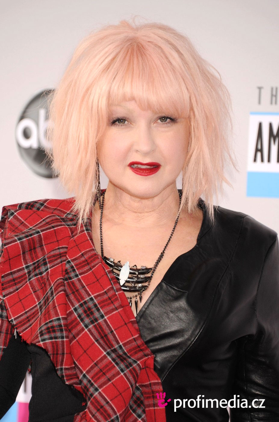 Cyndi Lauper Hairstyle Easyhairstyler