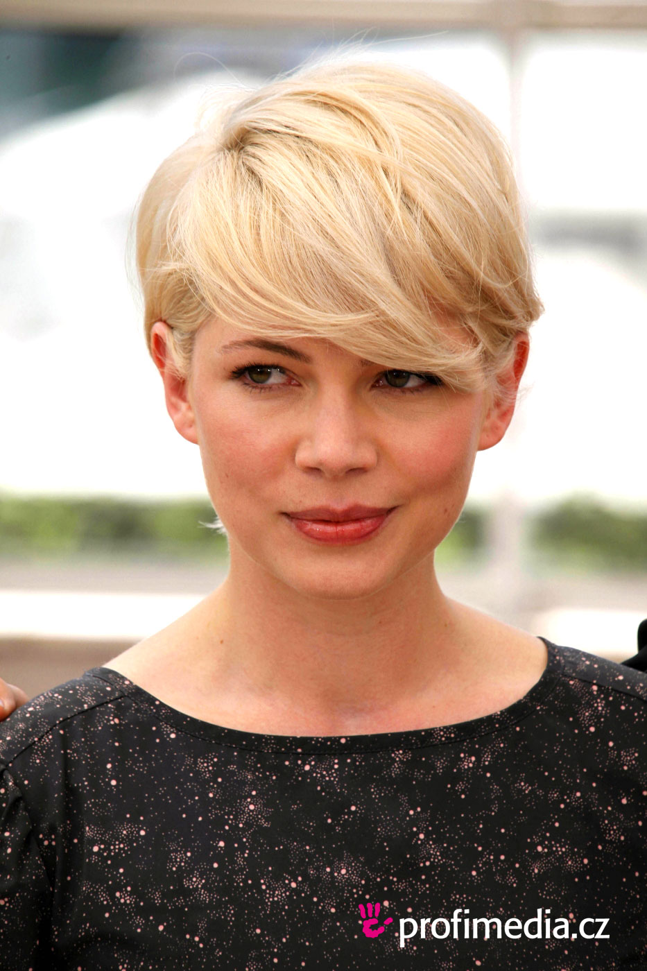 Michelle Williams  Enlarge Michelle Williams