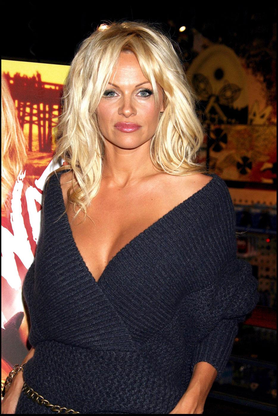 Pamela Anderson Hairstyle Easyhairstyler