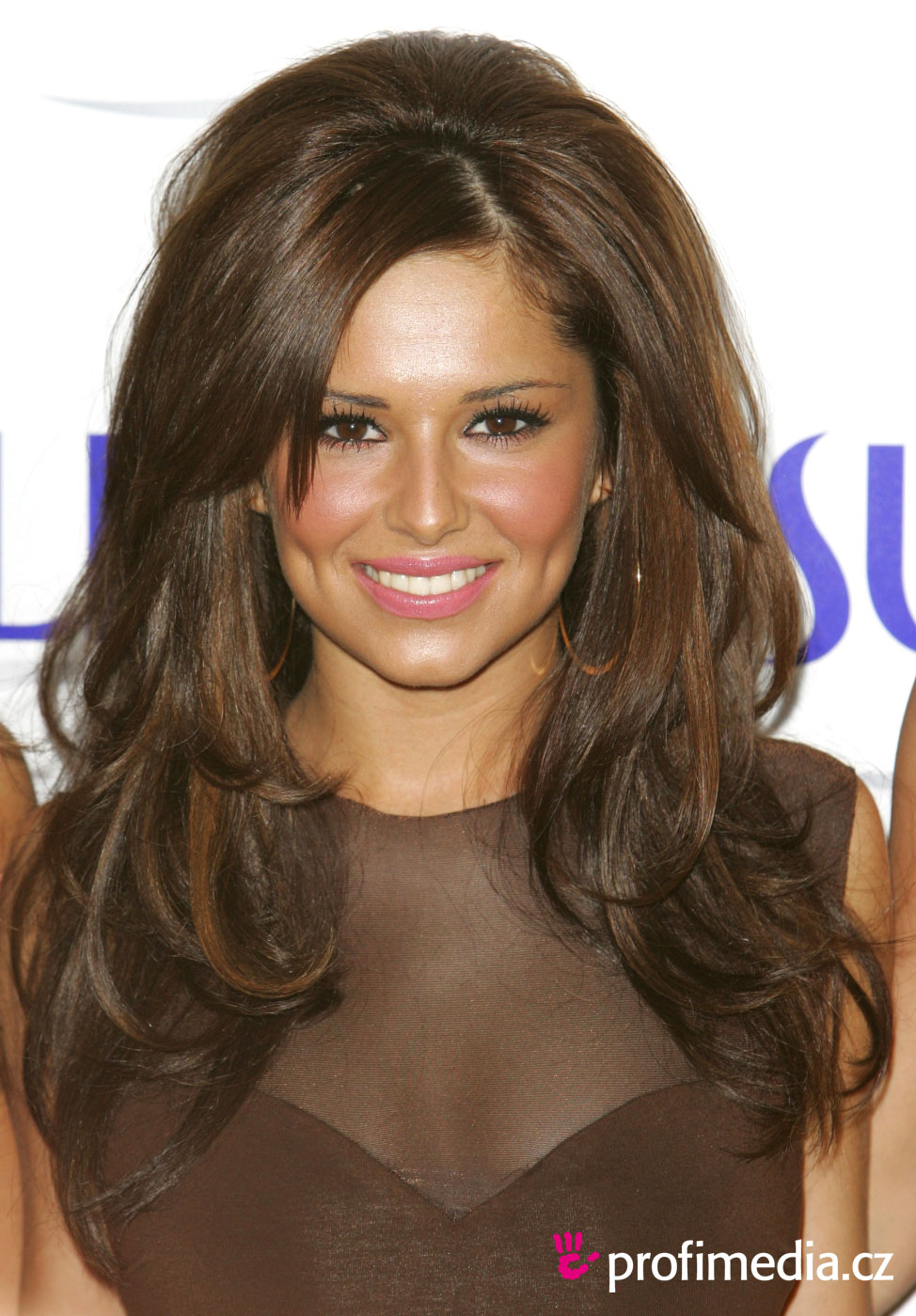 Cheryl Cole Hairstyle Easyhairstyler