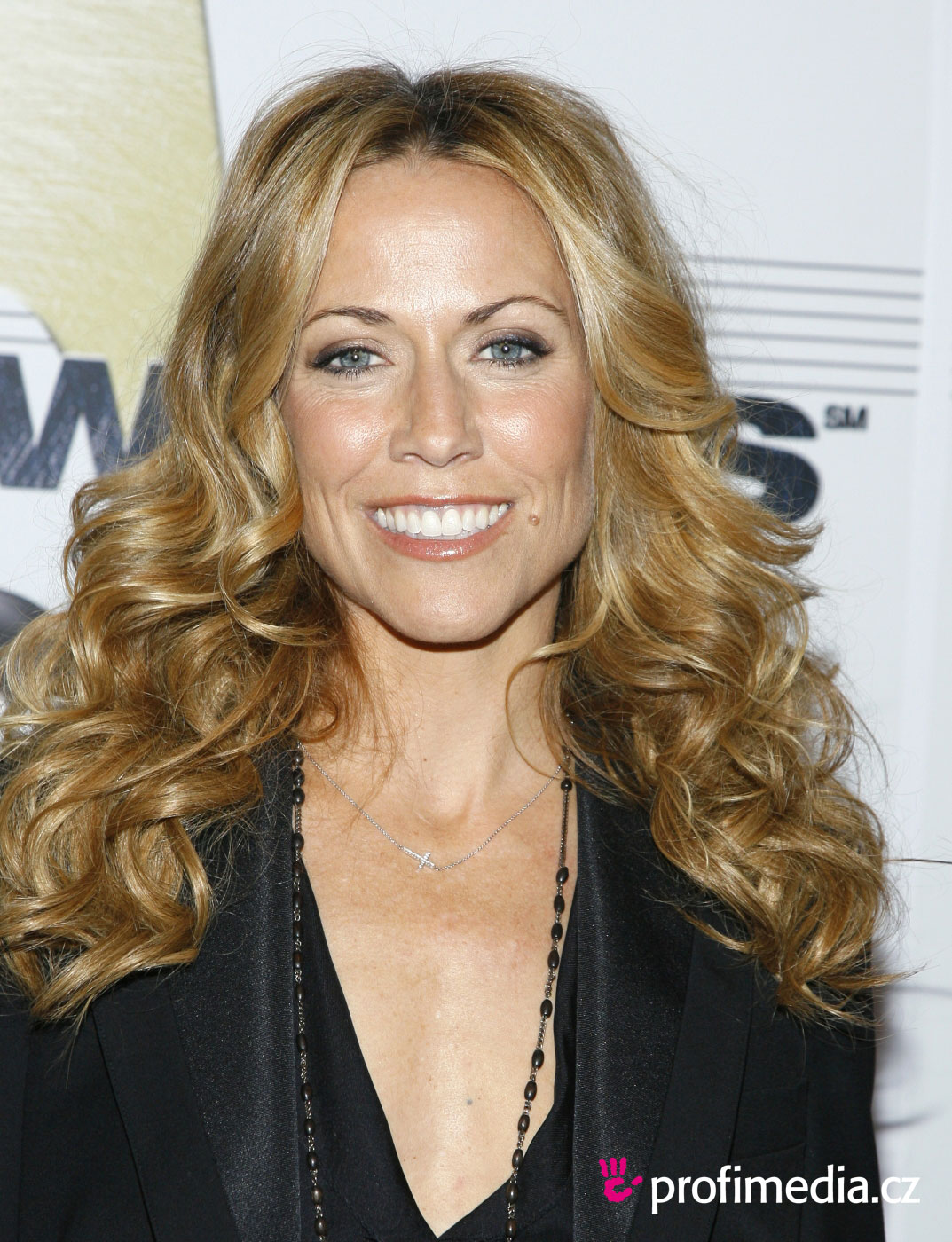 sheryl crow - - hairstyle - easyhairstyler