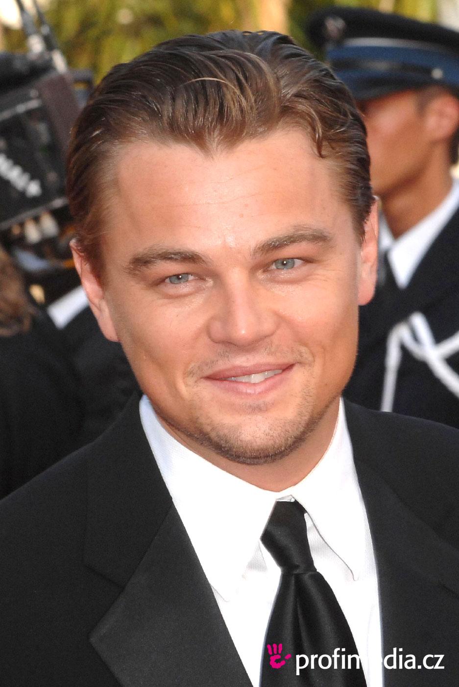 Leonardo Dicaprio Hairstyle Easyhairstyler