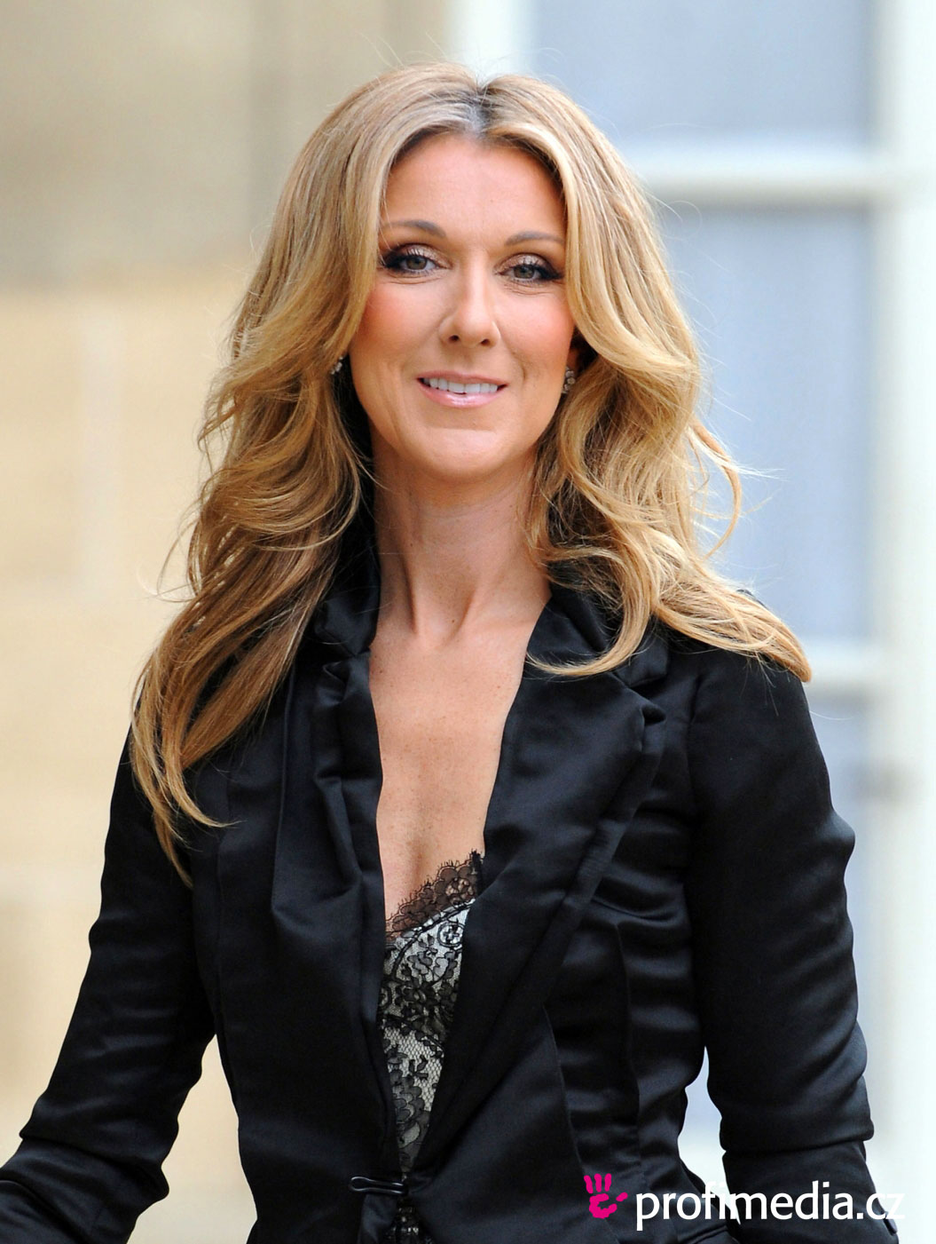 Celine Dion Hairstyle Easyhairstyler