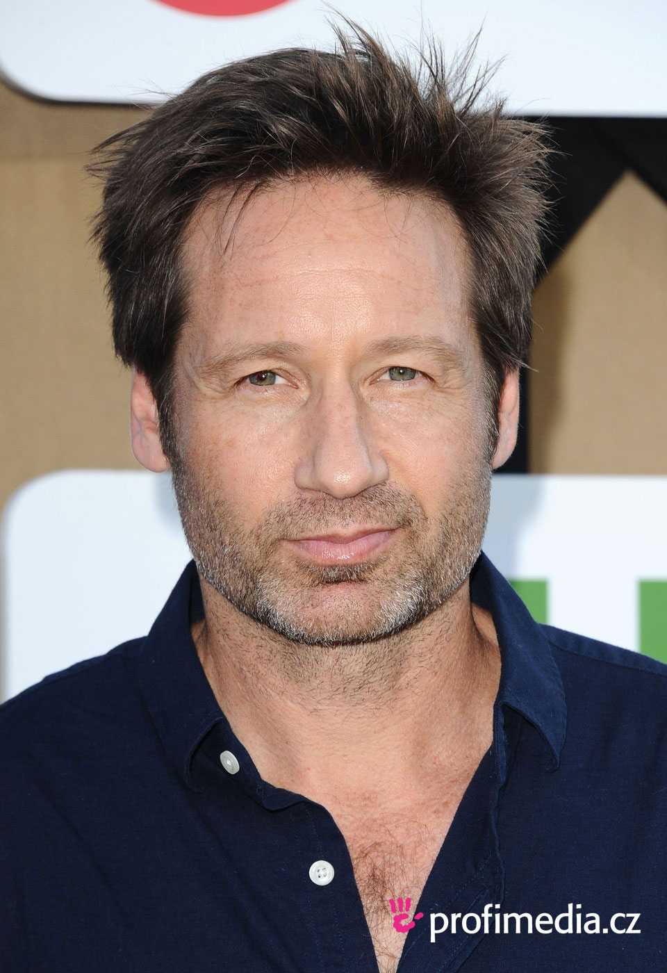 What is your favorite Hank hairstyle and why ... |David Duchovny Long Hair