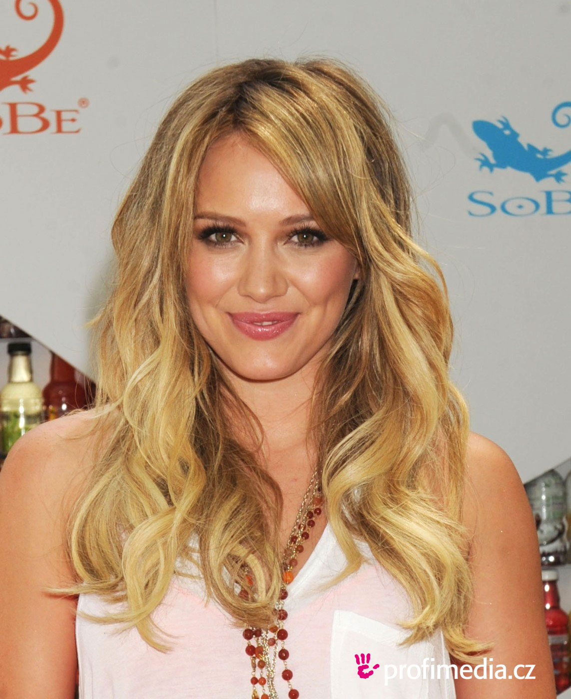 Phrase hilary duff celebrity something