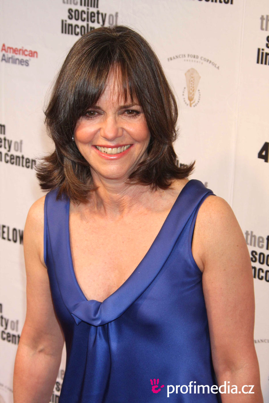 Sally Field Hairstyle Easyhairstyler