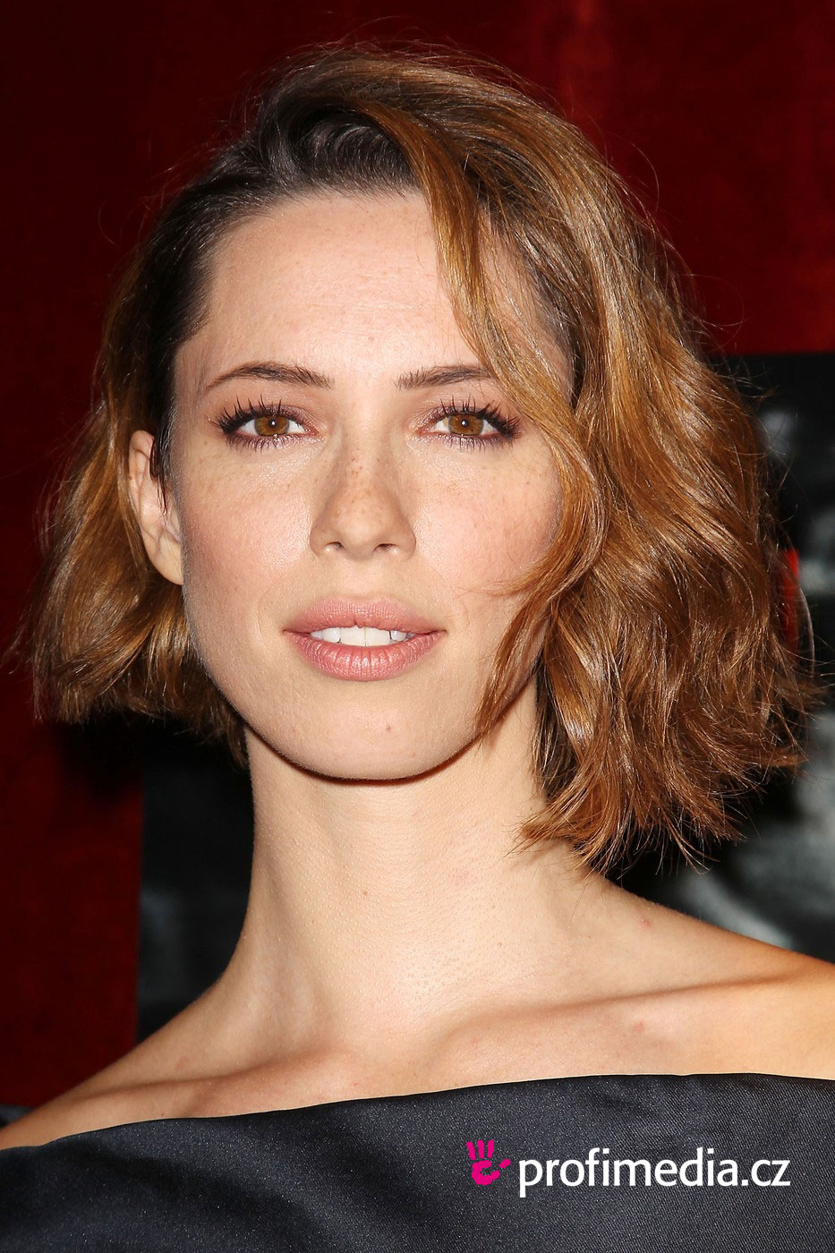 Rebecca Hall Hairstyle Easyhairstyler