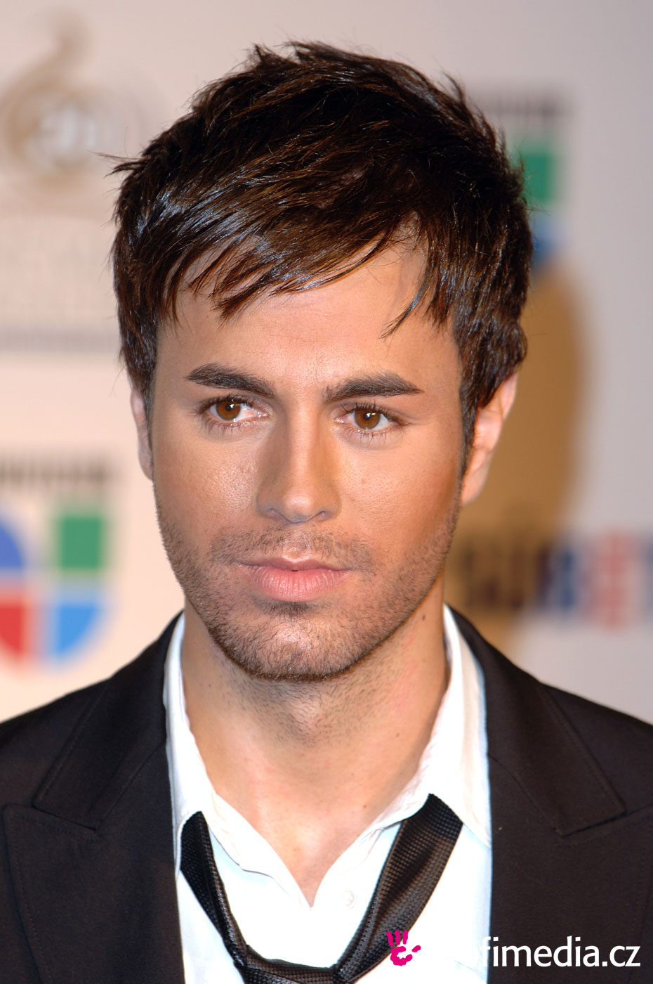Enrique Iglesias Hairstyle Easyhairstyler