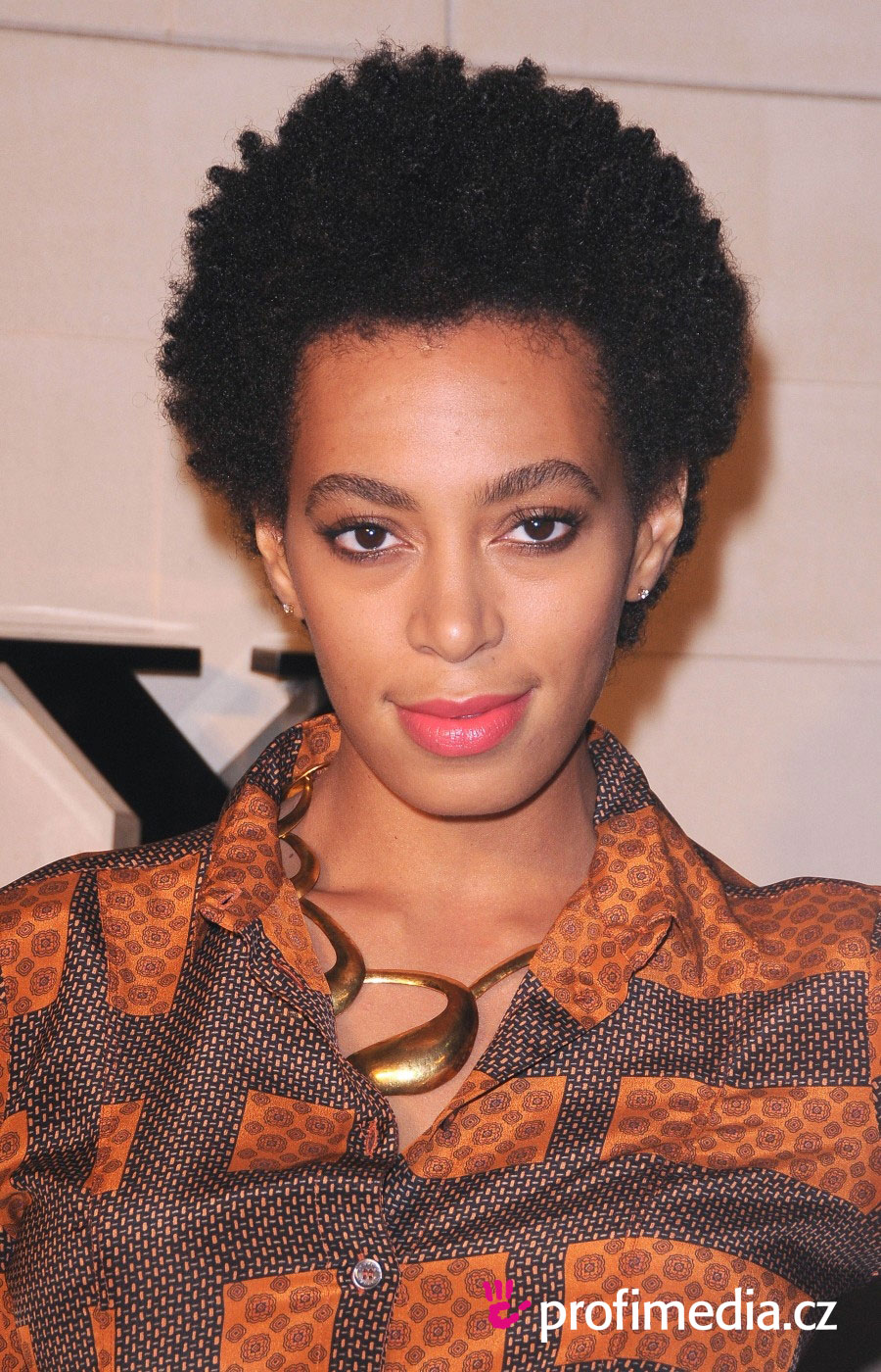Solange Knowles Hairstyle Easyhairstyler