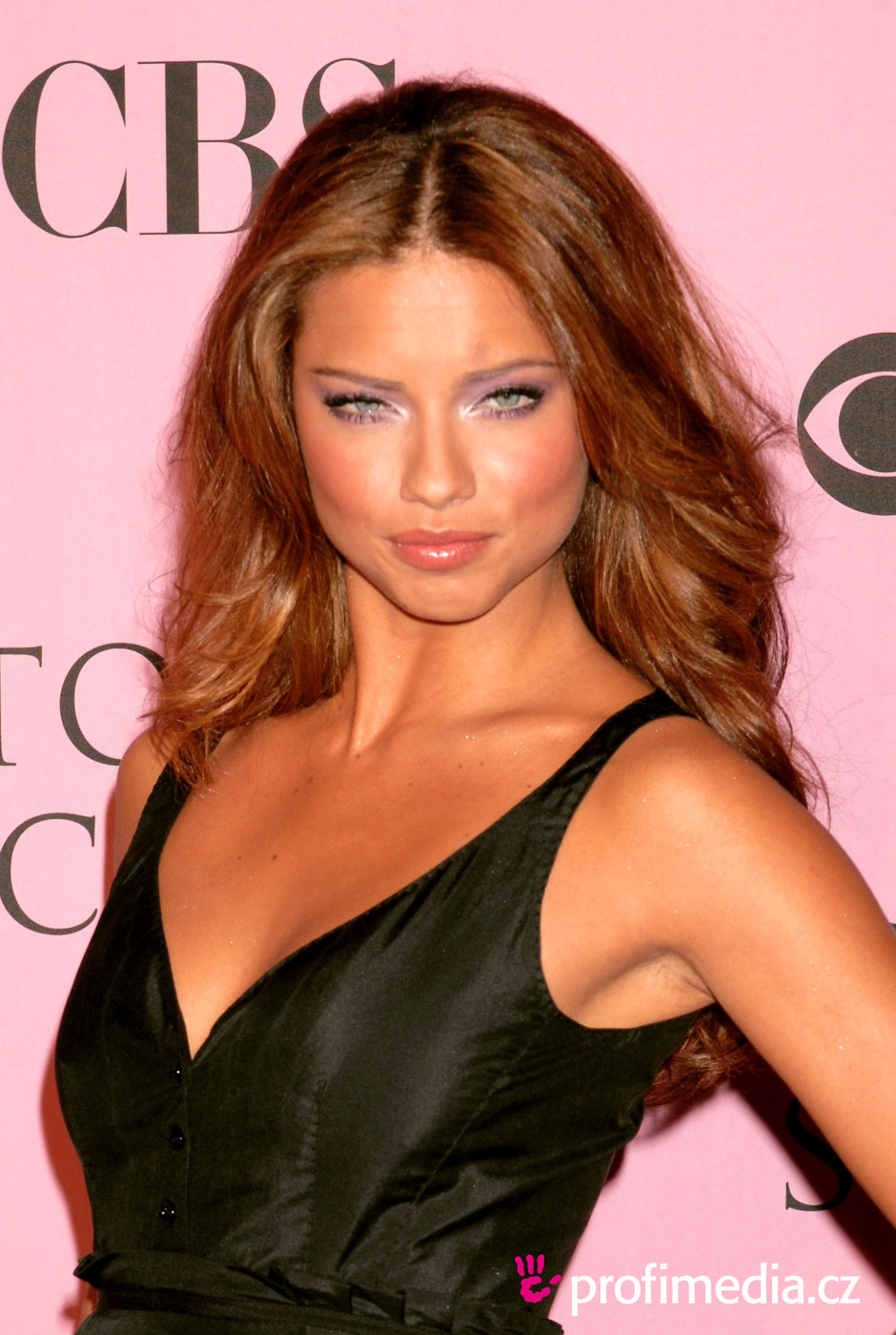Adriana Lima Hairstyle Easyhairstyler