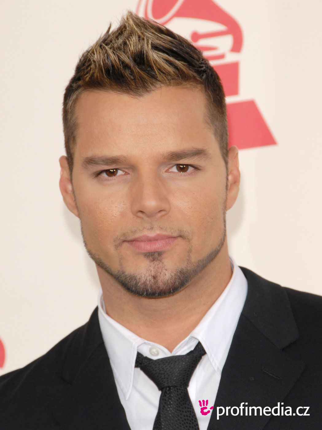 Ricky Martin Hairstyle Easyhairstyler