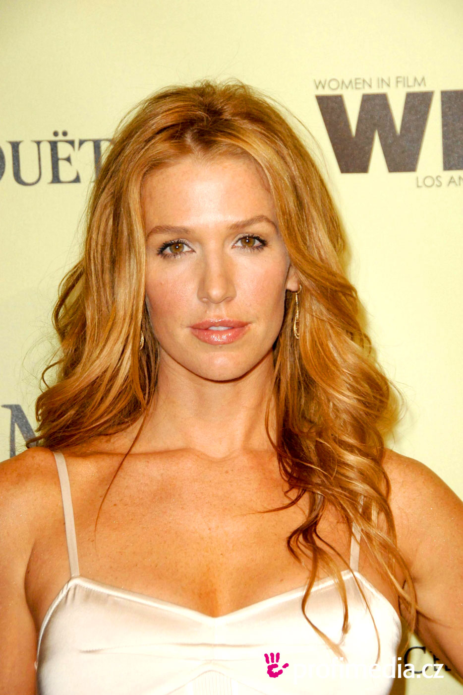Poppy Montgomery Hairstyle Easyhairstyler