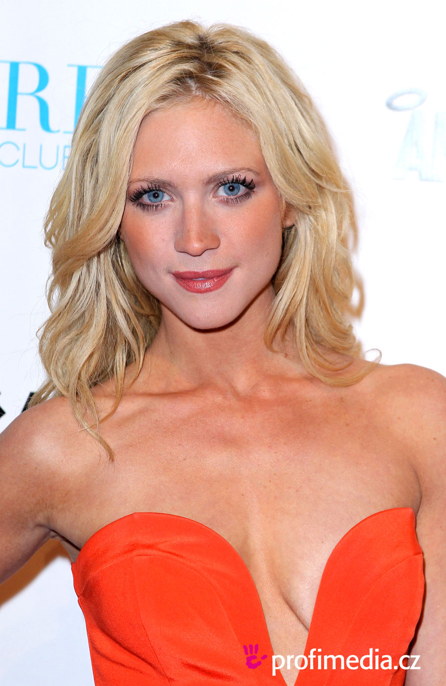 Brittany Snow Hairstyle Easyhairstyler