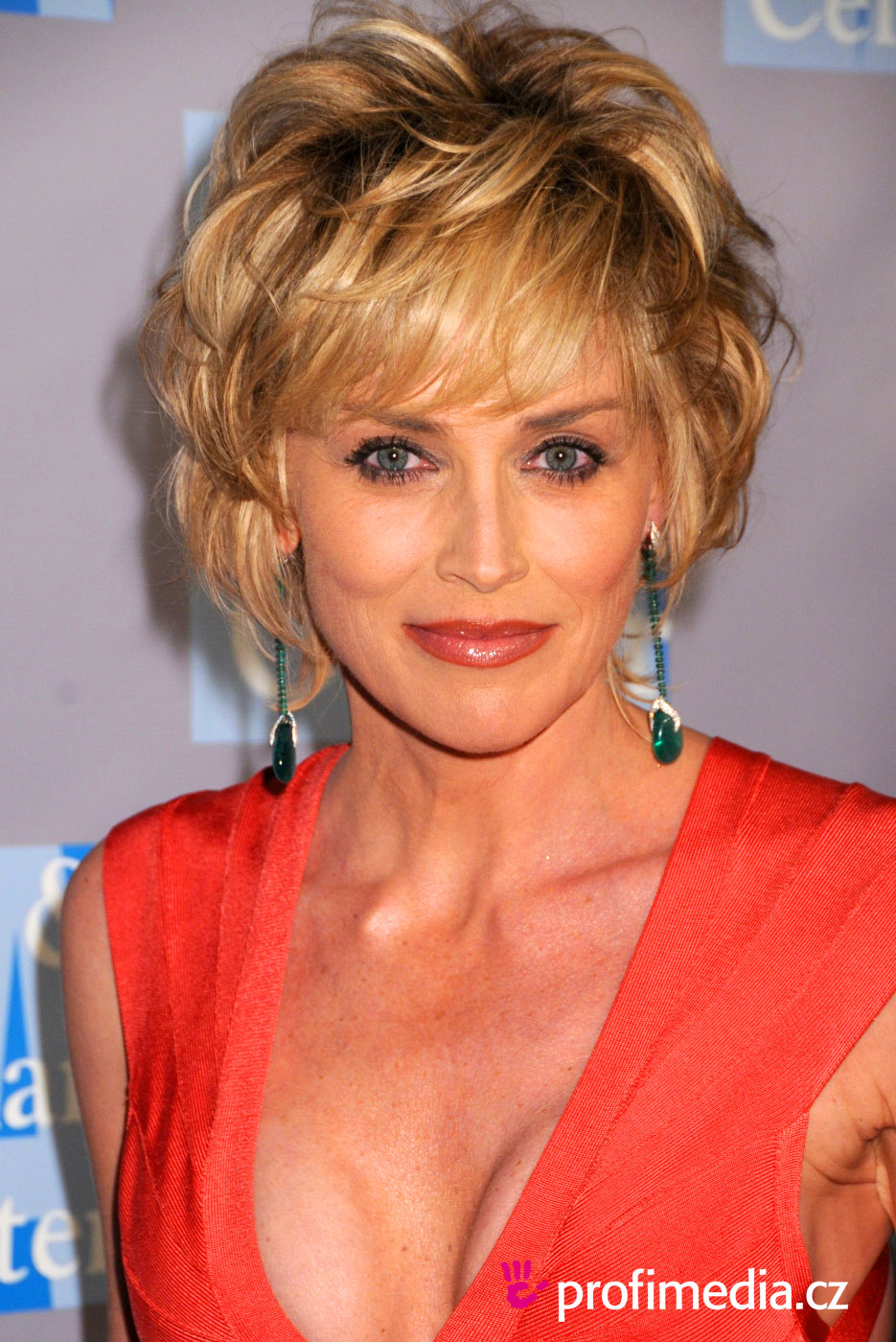 Sharon Stone Coiffure Happyhair