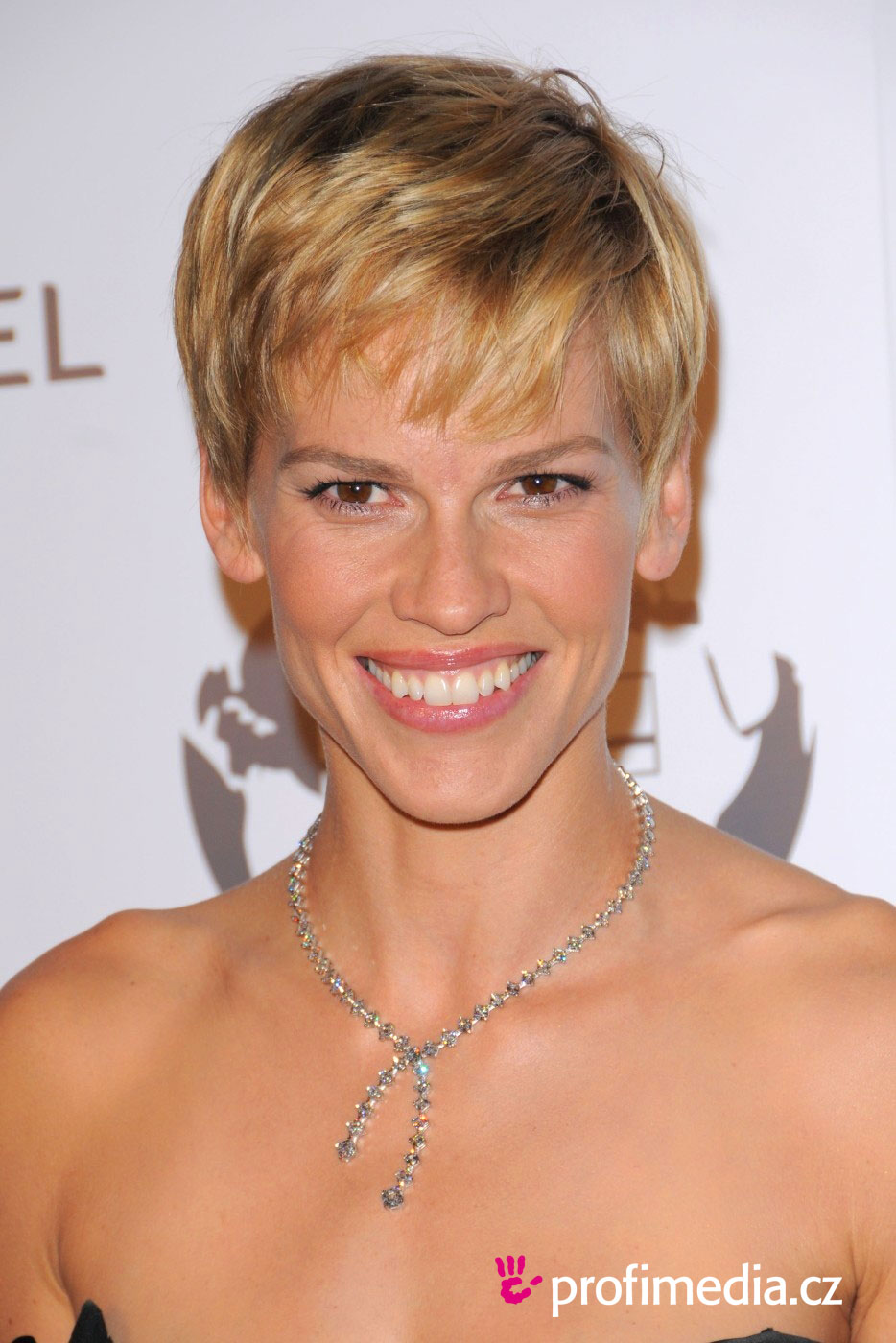 Hilary Swank Hairstyle Easyhairstyler