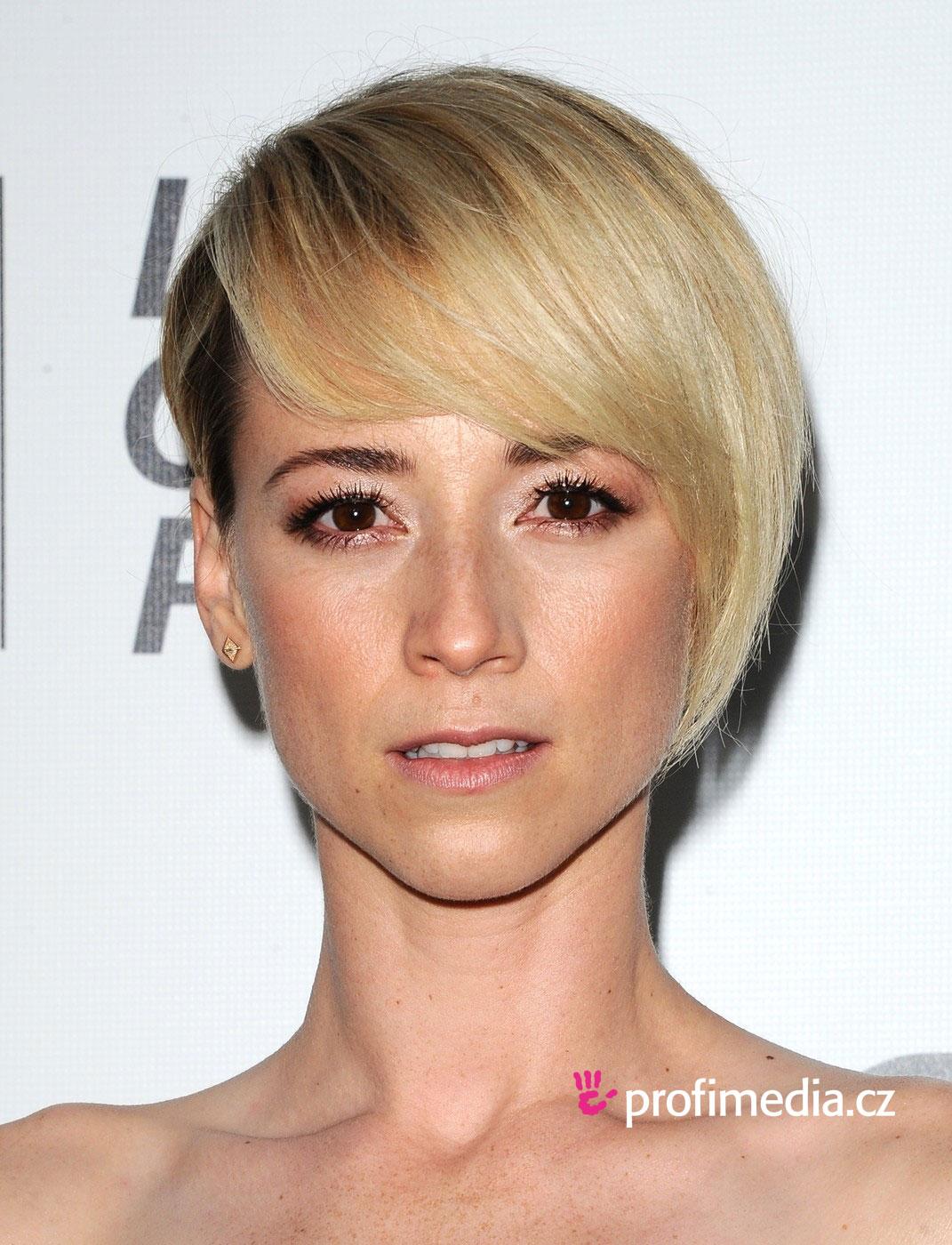 Karine Vanasse Hairstyle Easyhairstyler