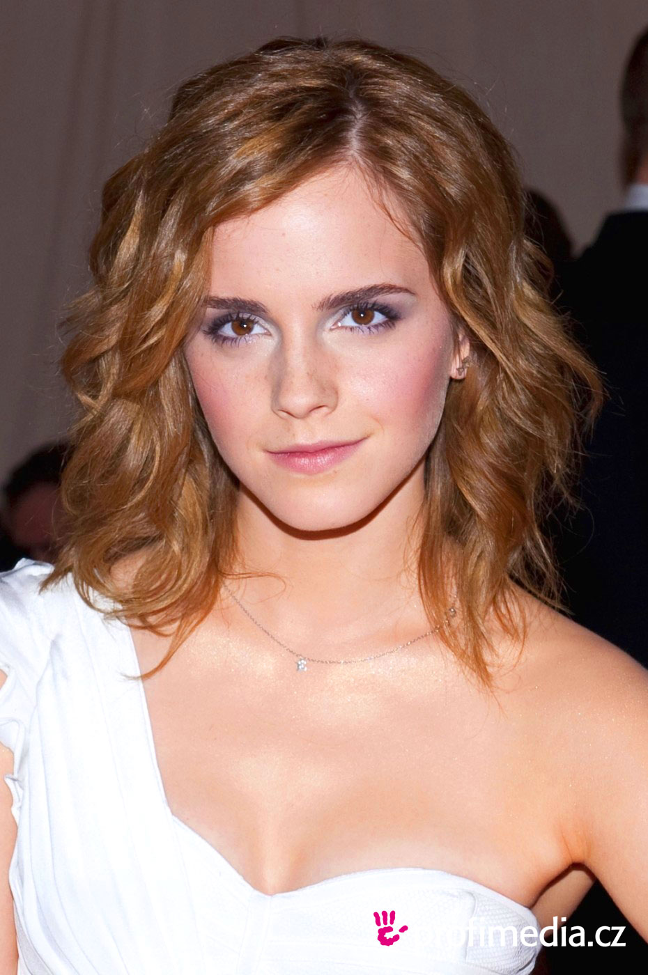 Hilary swank hairstyles for 2017 celebrity hairstyles by - Emma Watson Coiffure Happyhair