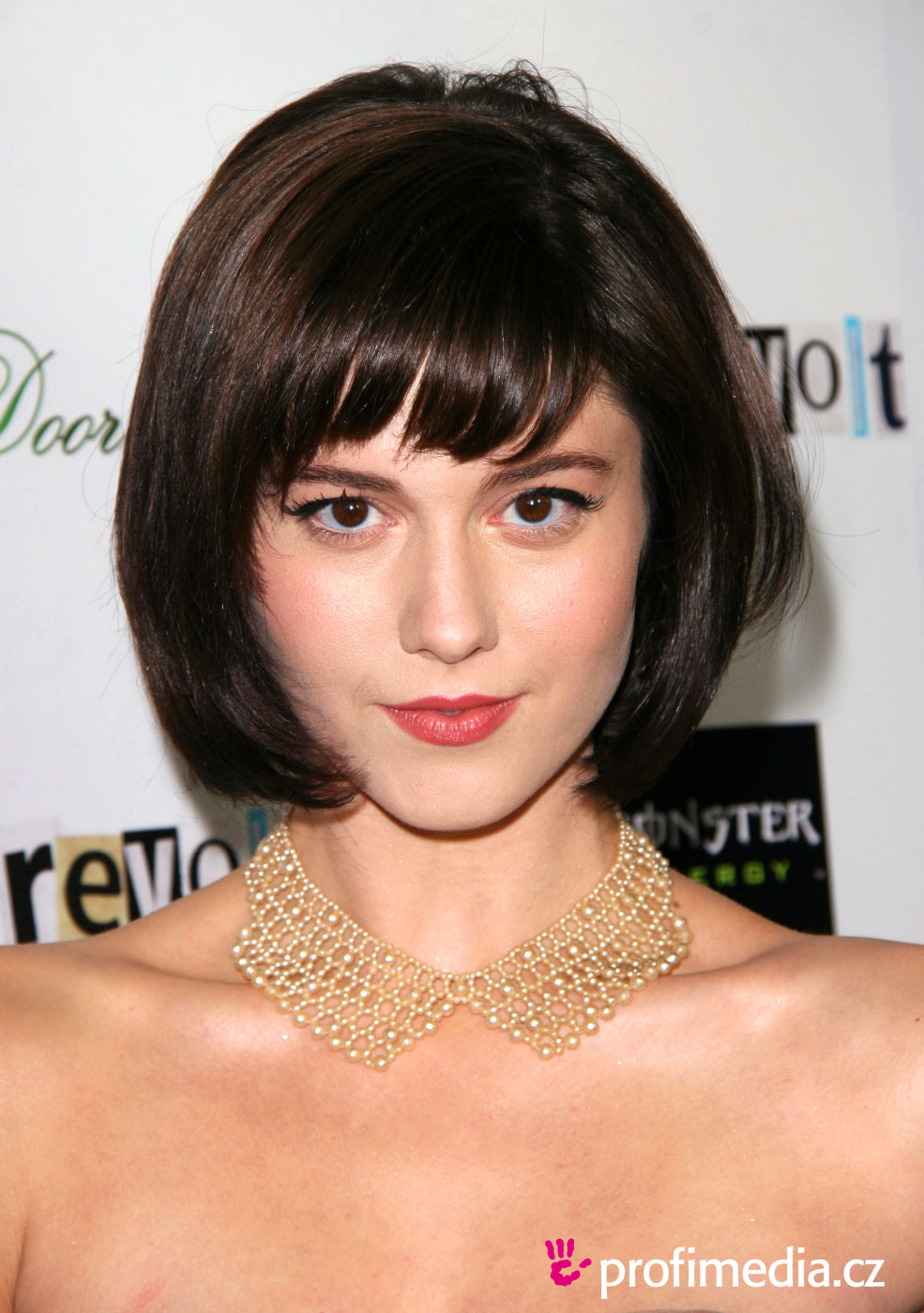 Mary Elizabeth Winstead Hairstyle Easyhairstyler